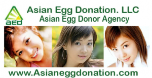 aya matsuura egg donor advertisement